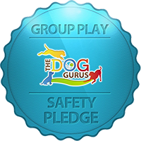 The Dog Gurus Safety Pledge